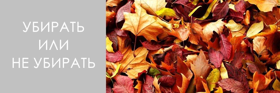 нужно ли убирать опавшую листву осенью