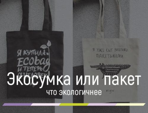 сумка вместо пакета