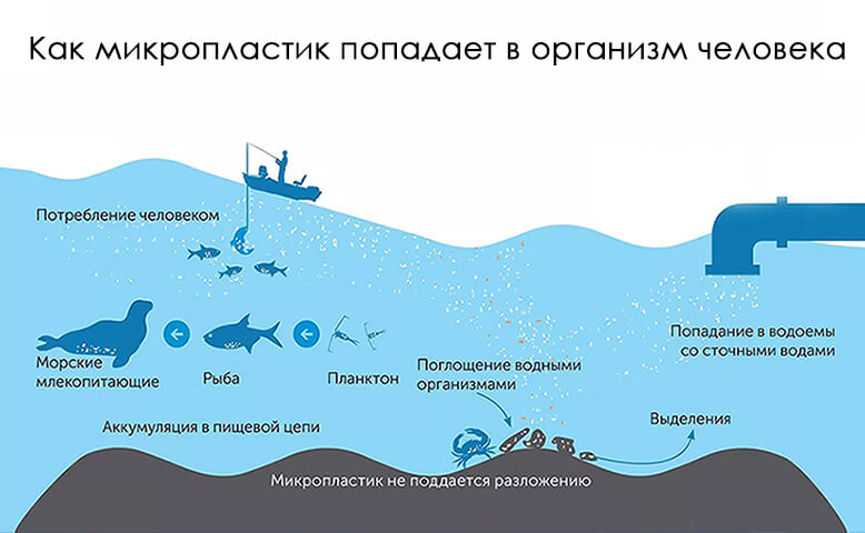 пластиковое загрязнение окружающей среды