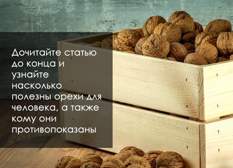 чем полезны орехи для организма человека